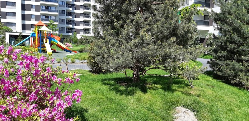 Aviatiei, Pipera, apartament 2 camere,